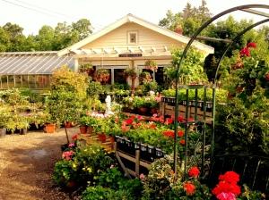 Garden_Center_Small